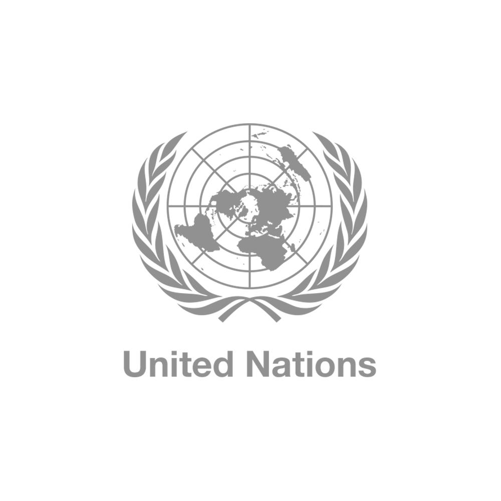 UN-logo-web