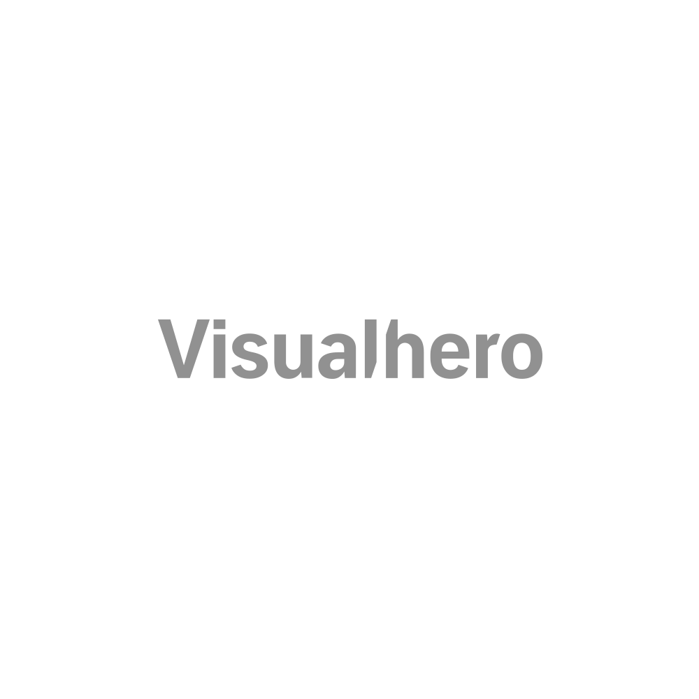 Visualhero-logo-web